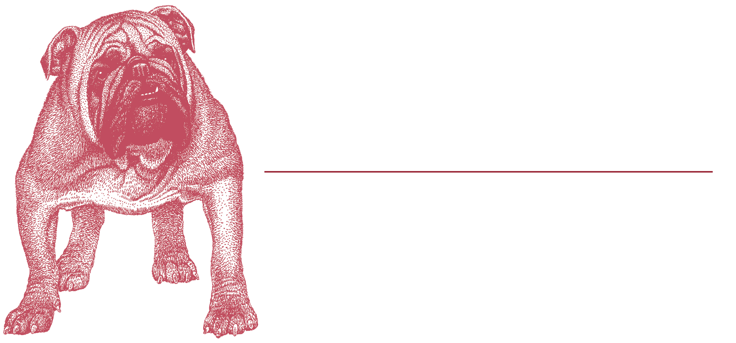 McEnany_Roofing_Logo_White.png
